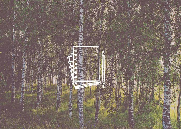 Metsatööde kalender. Virumaa Metsaühistu