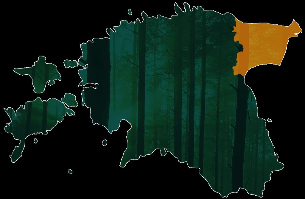 Virumaa Metsaühistu piirkond